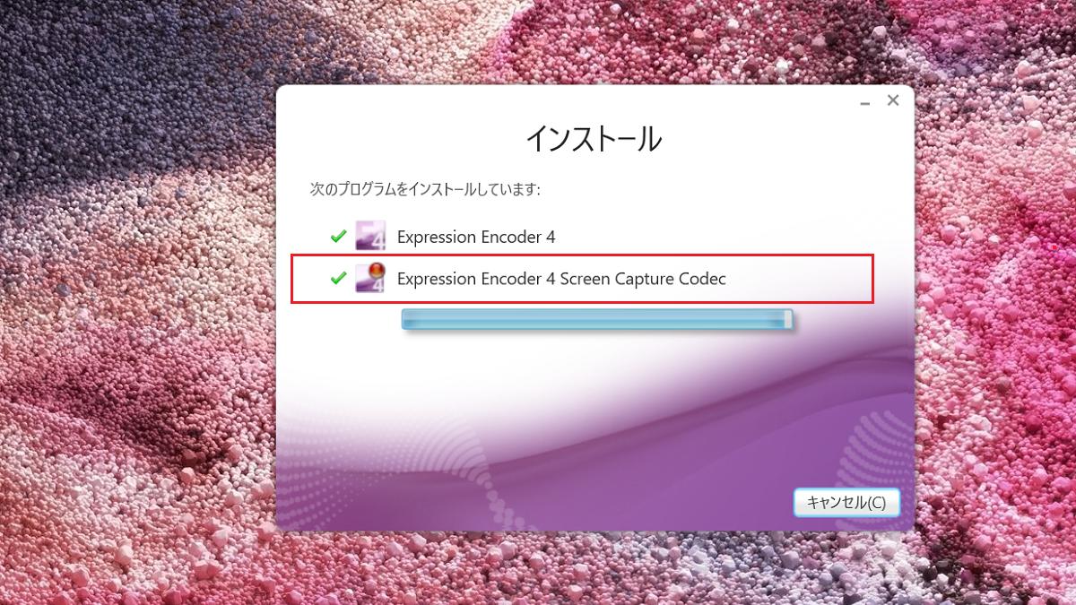 Expression Encoder Screen Capture