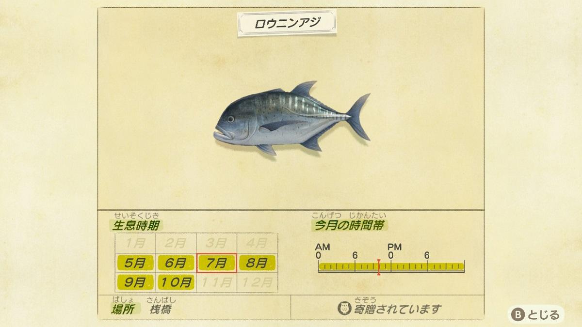 あつ森 桟橋で釣れるサカナ
